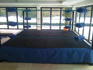 how to make a small wrestling ring